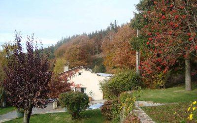 Chambres d'hôtes en automne